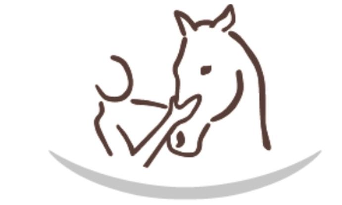 Systemische Pferdepraxis